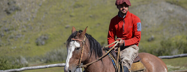 Horseback Rides at Estancia Torres del Paine