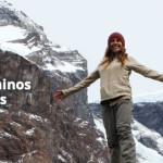Mi experiencia en Torres del Paine (Circuito W): Consejos y Curiosidades