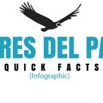 (Español) (English) Torres Del Paine: Quick Facts! [infographic]